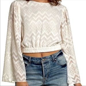 Gorgeous NWT WAYF shimmer blouse with bell sleeve
